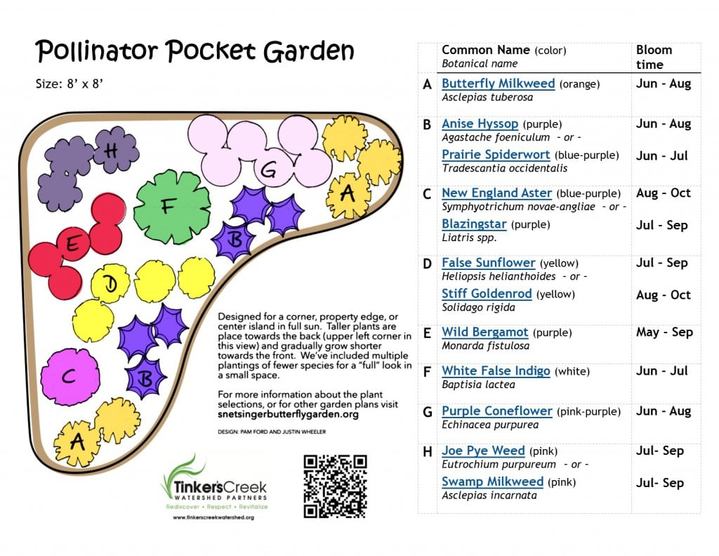 pollinator garden design. Vision Plan a Pollinator Pocket Garden  Tinkers Creek Watershed Partners